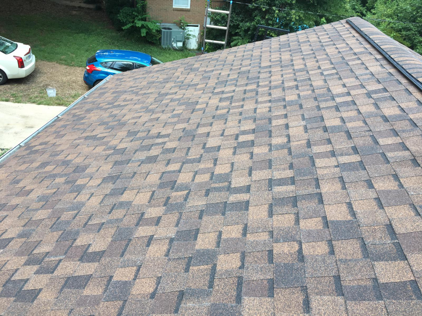 Does Your Roof Need Professional Attention?